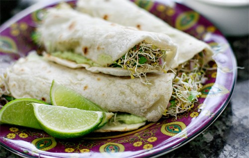 Cucumber tortillas