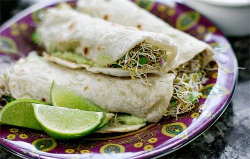 Cucumber tortillas