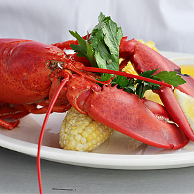 8 Delicious Things in Maine
